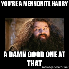 HP Mennonite Meme
