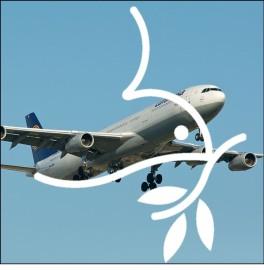 Mennos in flight